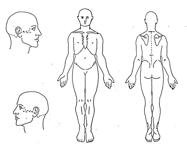medical body form pictures to pin on pinterest